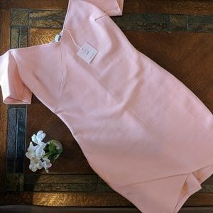 NWT form fitting off the shoulder dress